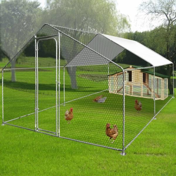 poulailler 6 poules