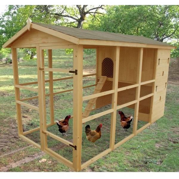 poulailler 2 poules